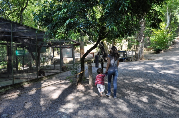 Minha irmã levando o Vítor para ver os macacos pela décima vez!